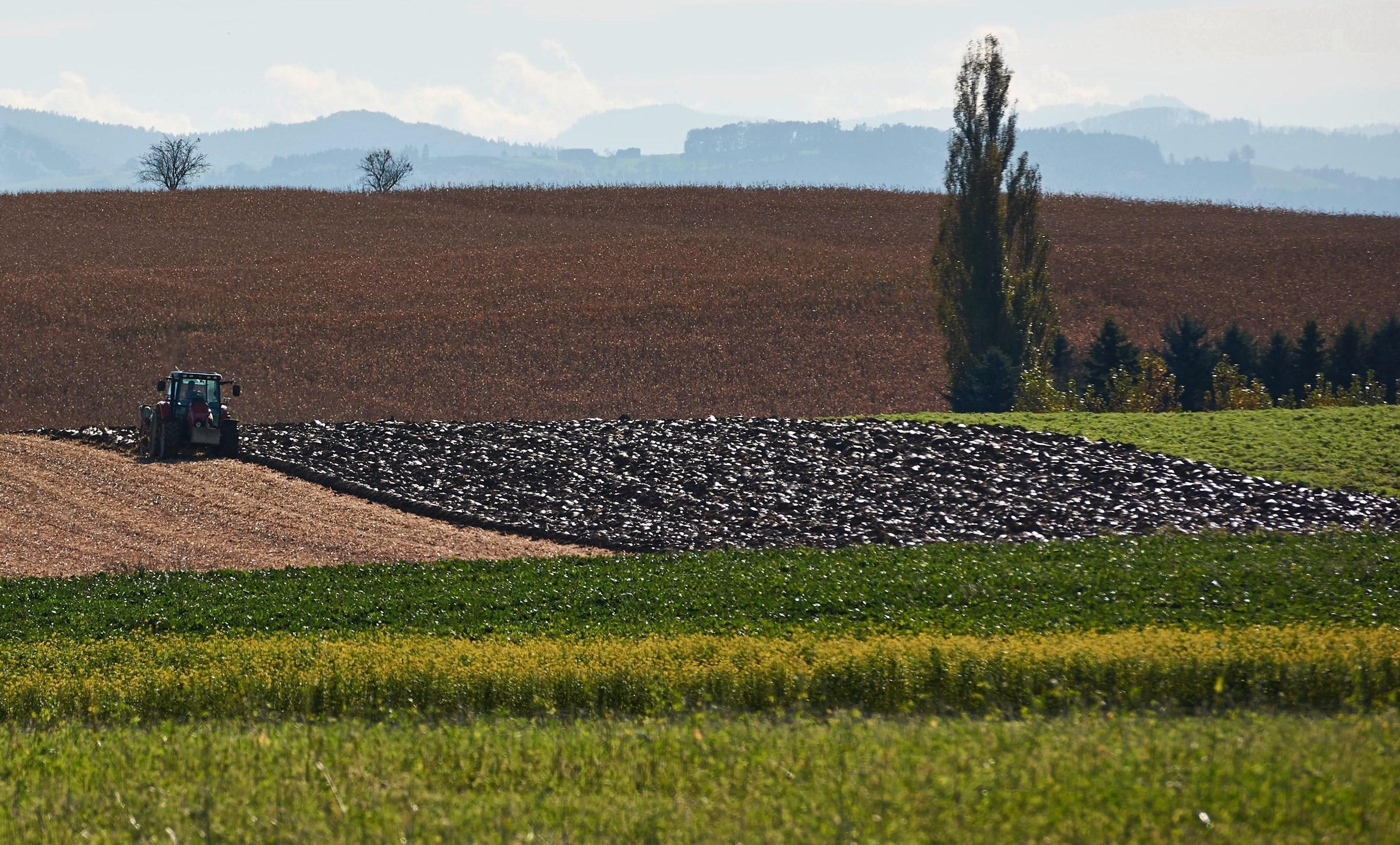 Ackerbaulandschaft mit Traktor