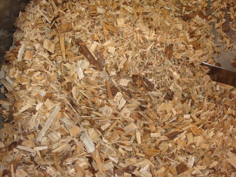 Typische Waldhackgut-Praxisprobe, die aus Rückständen der Waldbewirtschaftung und im Wesentlichen aus Weichholz erzeugt wurden.