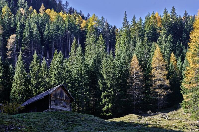 Waldlichtung mit Heuschober